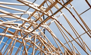 Prefabricated light wood frame roof truss